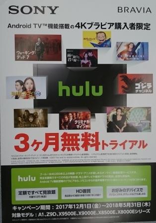 HULUキャンペーン(blog).jpg